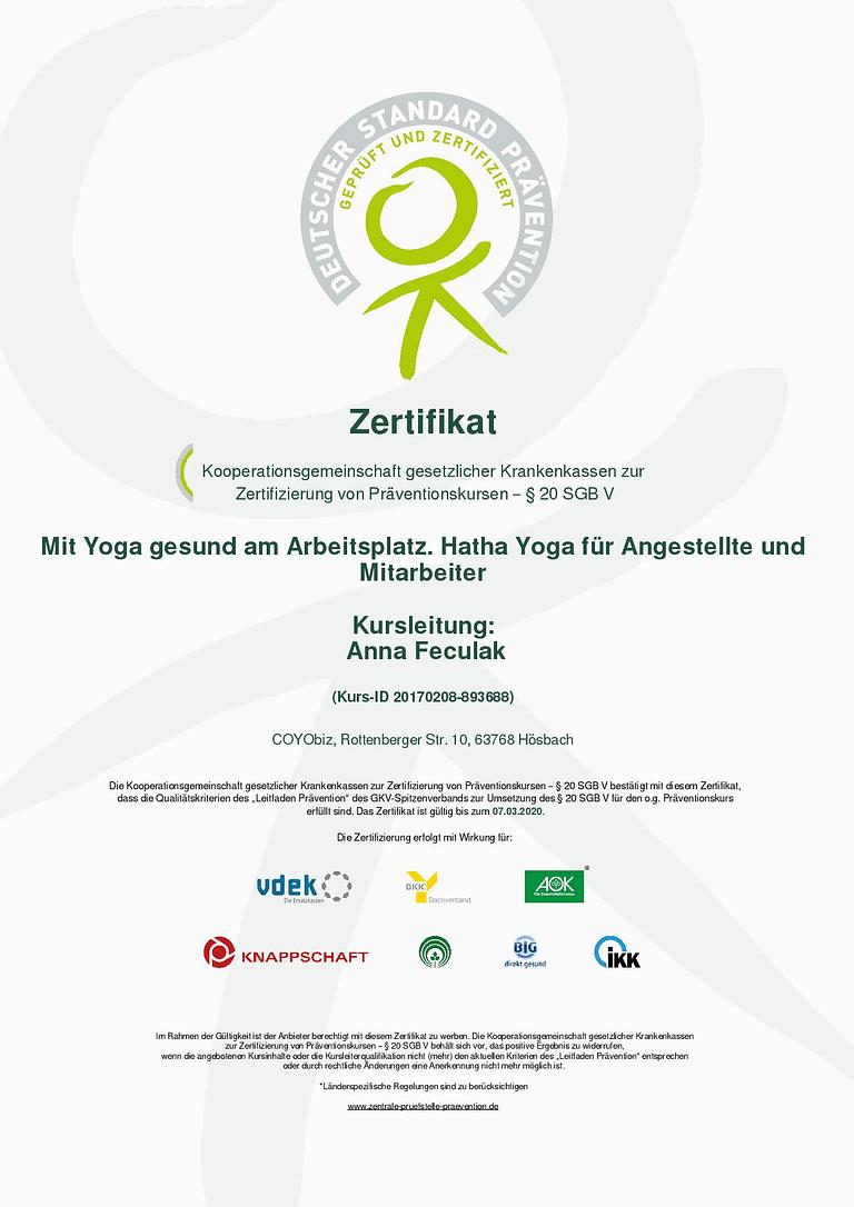 zertifikat_20170208-893688-page-001