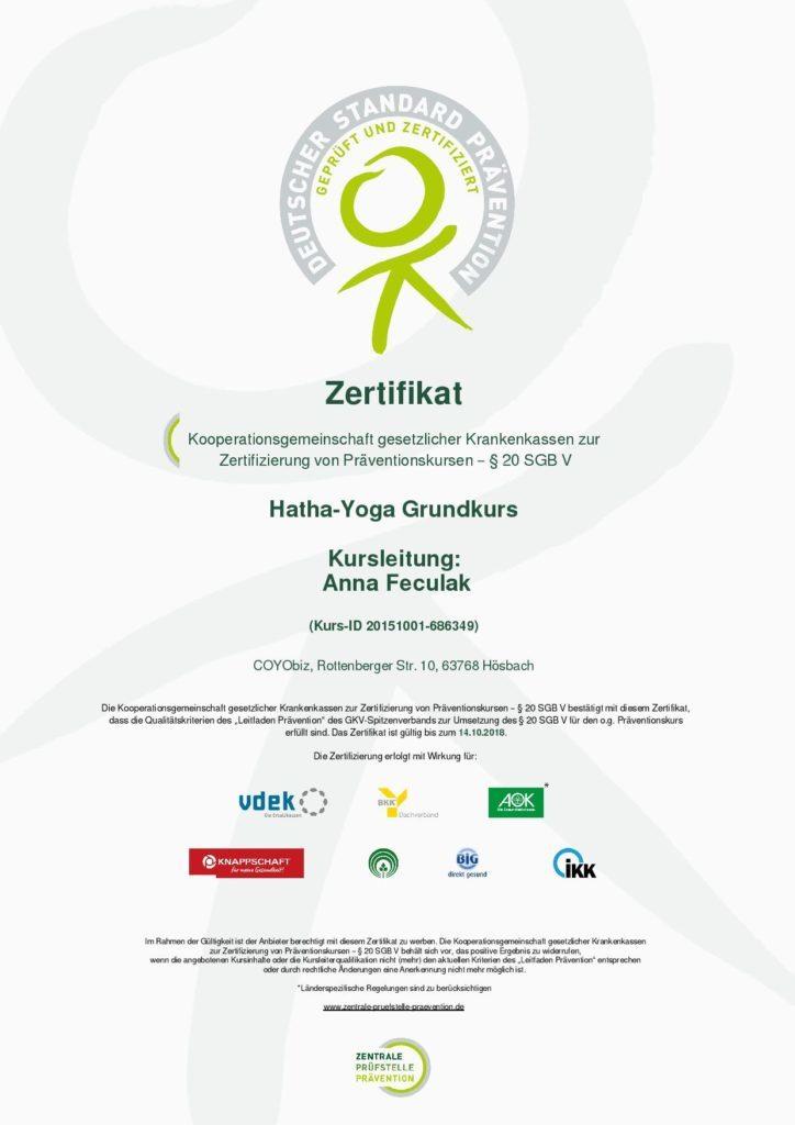 zertifikat_1-724x1024